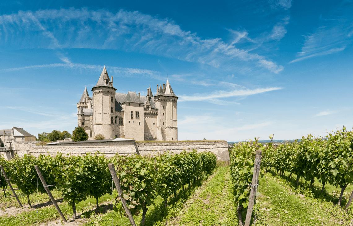 bordeaux wine tasting masterclass