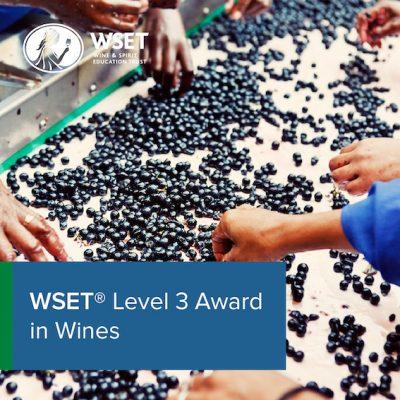 Level 3 Awards in Wines - Tasting Exam Resit Only